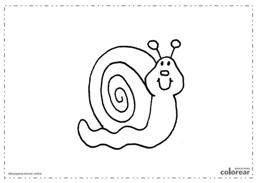 Caracol fácil de colorear para niños