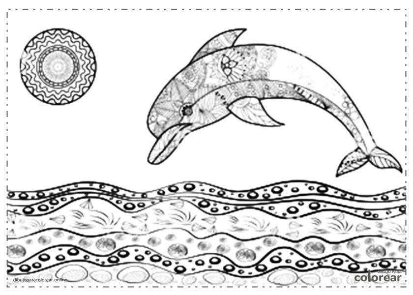 Mandala de delfín