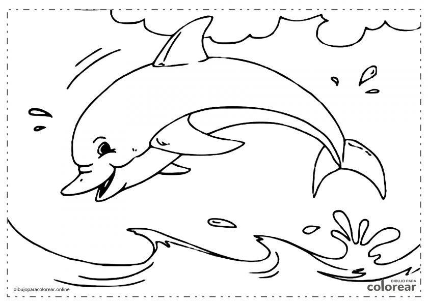 Delfín saltando por encima del agua