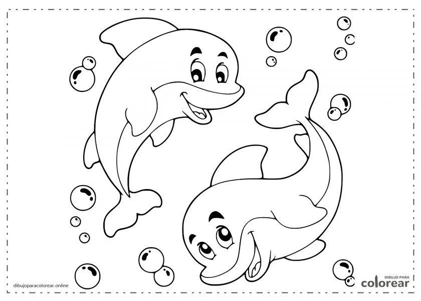 Delfines graciosos en el fondo del mar