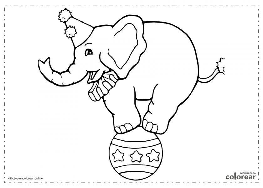 Elefante en el circo encima de una pelota