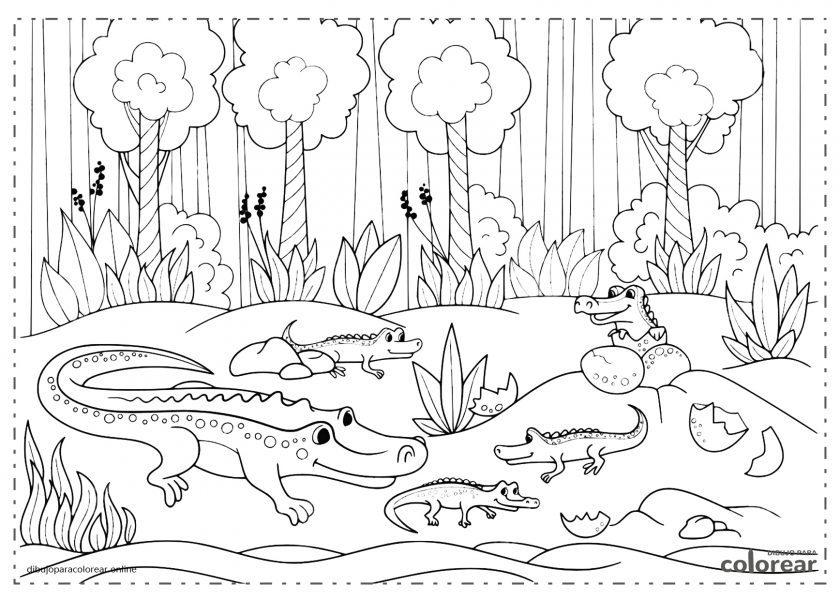 Familia de cocodrilos en la selva