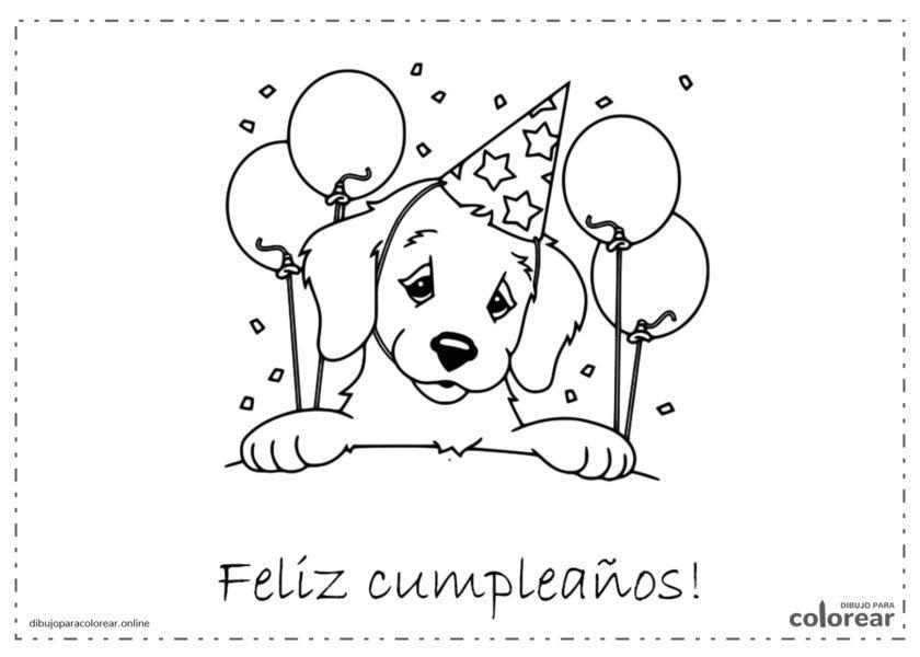 Perro con globos y gorro de cumpleaños