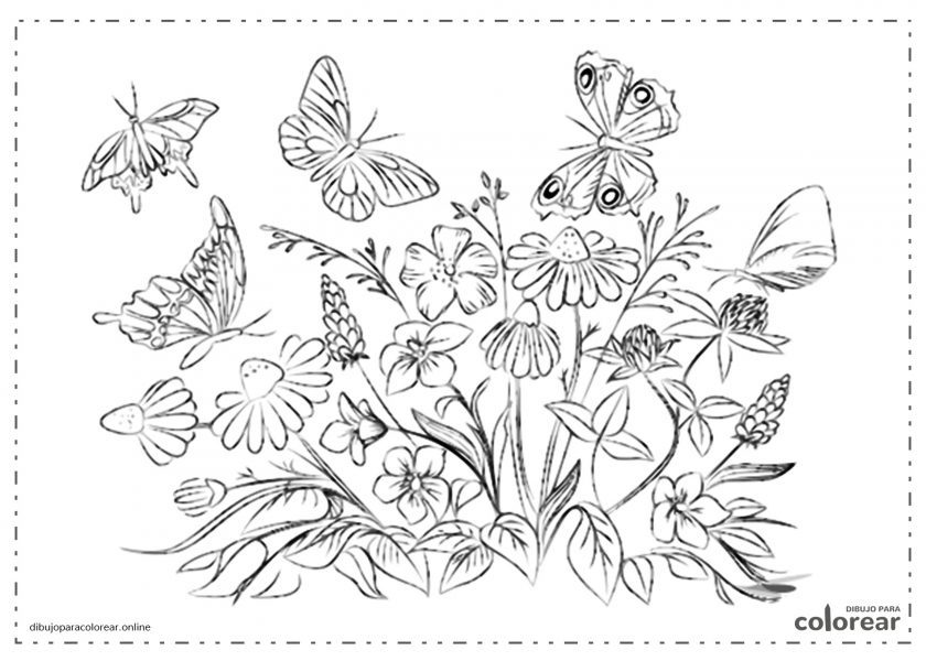 Mariposas entre flores