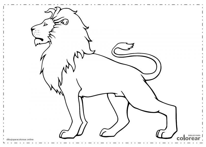 León de perfil con su melena