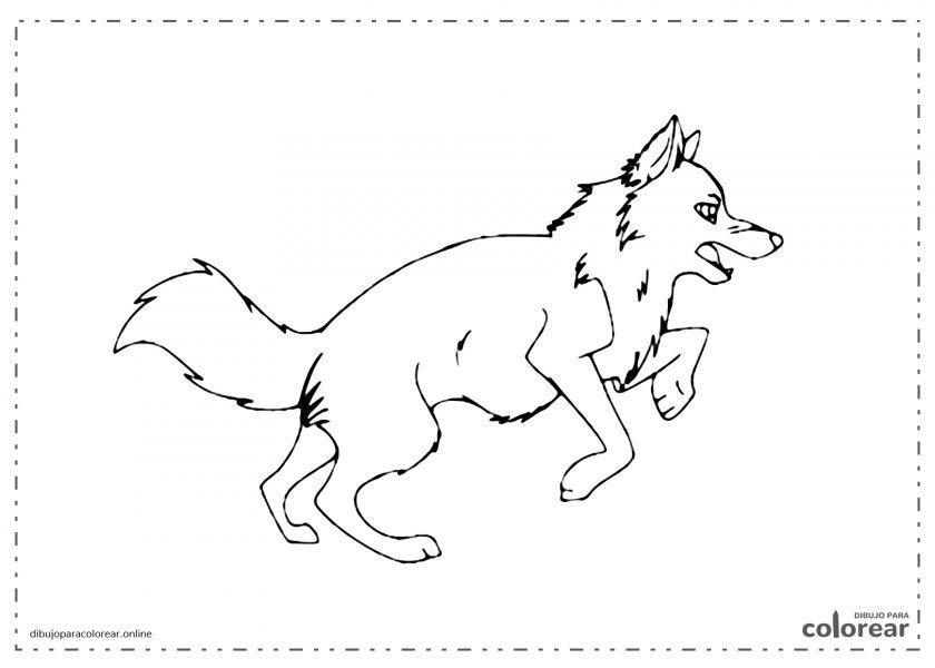 Lobo saltando y corriendo