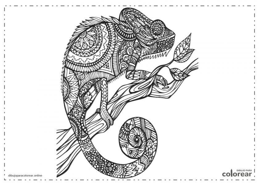 Camaleón Mandala