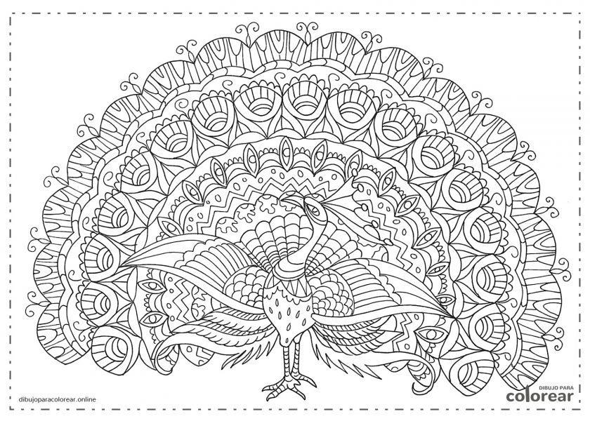 Mandala Pavo Real