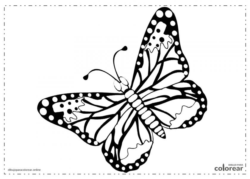 Mariposa fácil de pintar