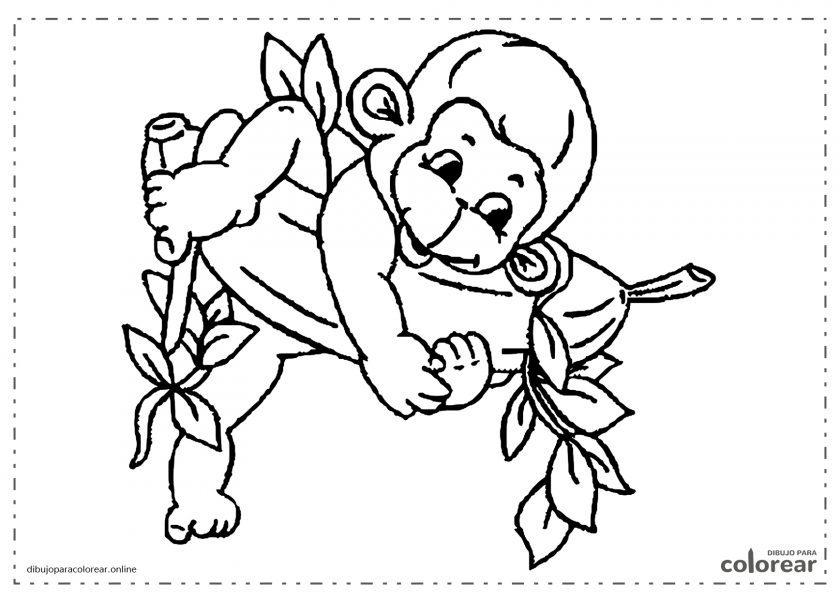 Mono bebé comiendo un plátano gigante