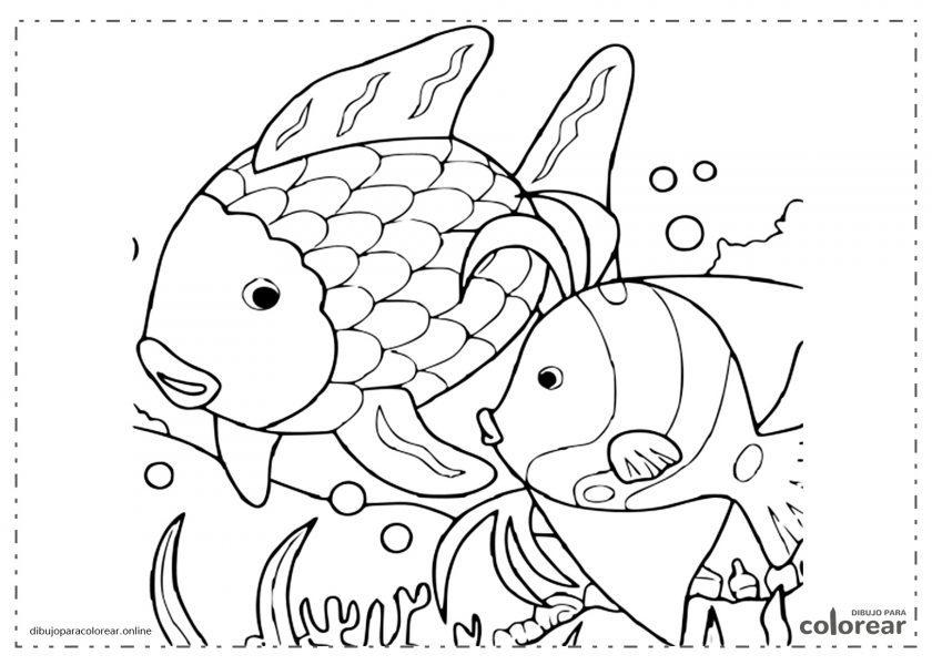 Peces con algas en el fondo del mar