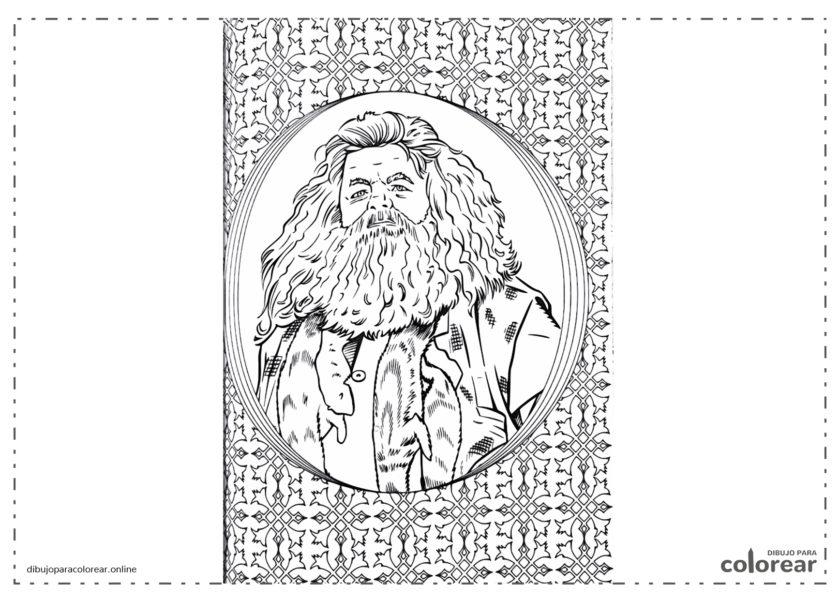 Libro con Rubeus Hagrid en la portada