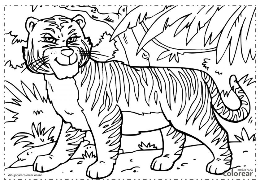 Tigre salvaje en la selva